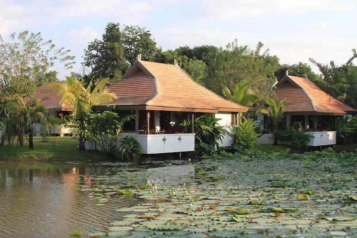 Private Lake View Cottage w/ Free Bikes & Pool