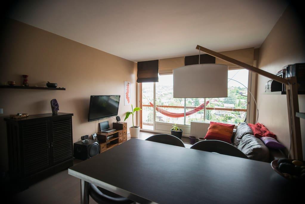 charmant appartement zen annecy appartements louer annecy rh ne alpes france. Black Bedroom Furniture Sets. Home Design Ideas