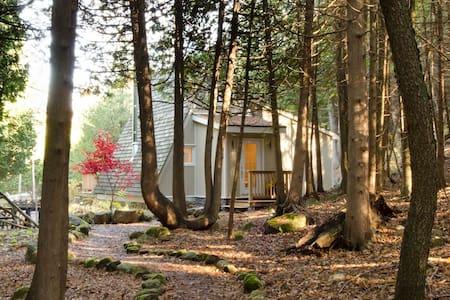 Kimberley Creek Cabin - Kimberley - 住宿加早餐
