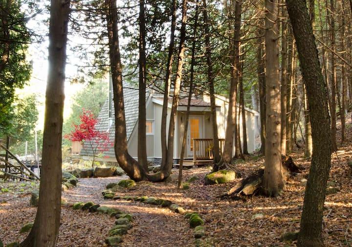 Kimberley Creek Cabin