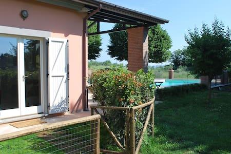 Relax on the hills around Orvieto - Orvieto - Apartment