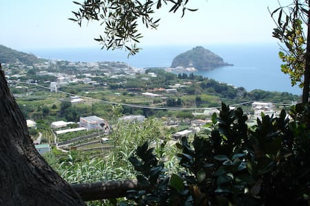 Friendly & thermalsea house Ischia2