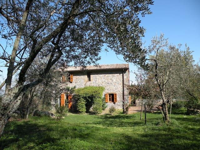 Intero casale nella campagna Orvietana - Orvieto - Villa