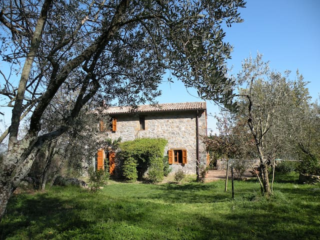 Casale nella campagna Orvietana - Orvieto