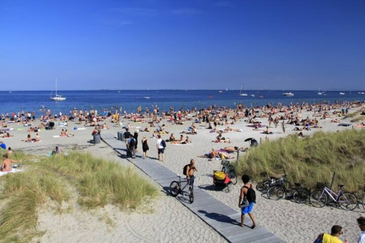 Sommerferie ved stranden - masser af plads