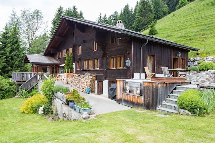The Alps Wonder Chalet - Rougemont - House