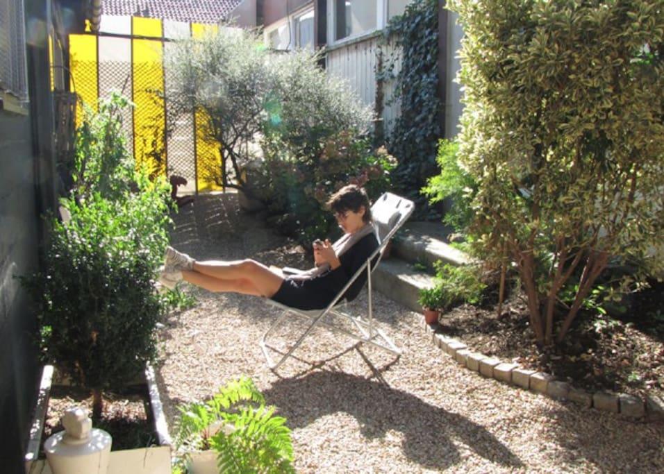 The garden on a sunny day