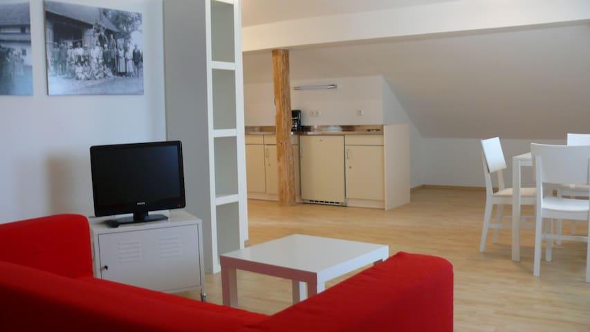 Arnstorfer Gästehaus - Arnstorf - Apartment