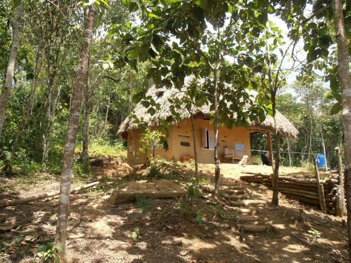 Sacharuna Adventure - ecotourism