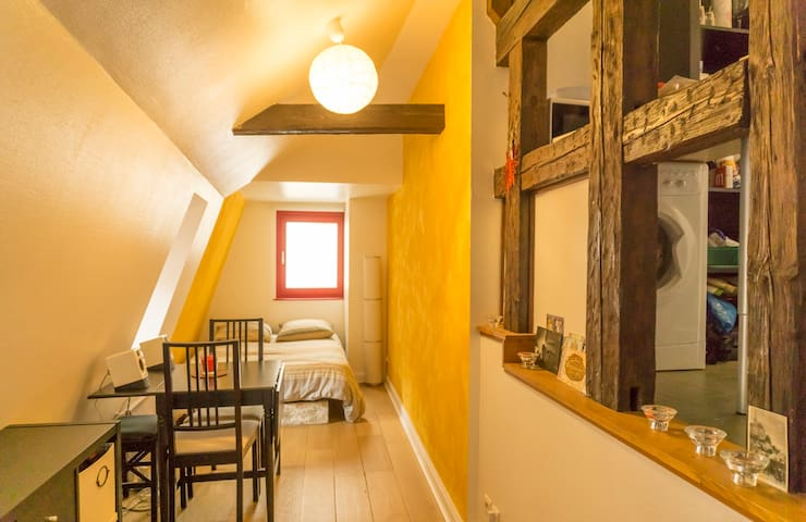 Charming Attic Duplex • City Center - Štrasburk - Byt