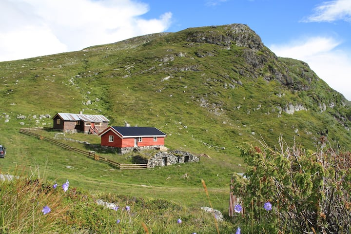 The Cabin - Jonskørstølen