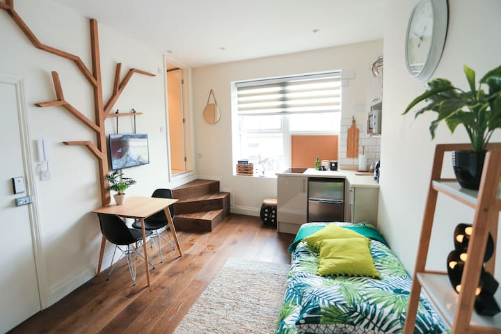 Twin Bedded Penthouse Studio by the Leicester sq