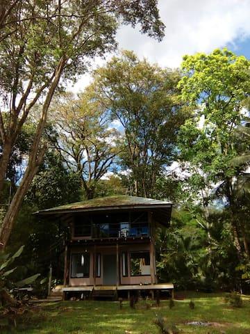 Rincón Hause, Golfo Dulce - Provincia de Puntarenas, CR - House