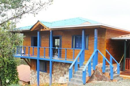 Estancia Arroyazo Azul, Constanza