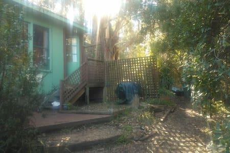 Old Coach Studio - Skenes Creek