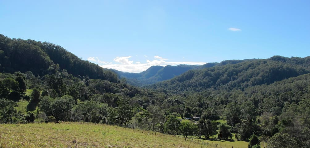 Terania Creek - in the heart of the Hinterland