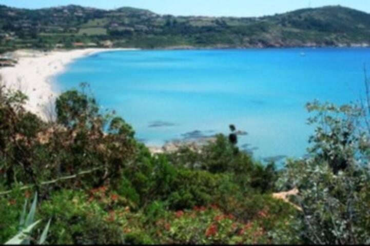 Corse Cargèse  Appt vue mer, piscine, plage à pied
