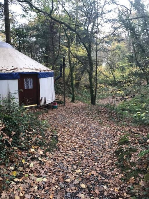 large secluded woodland yurt