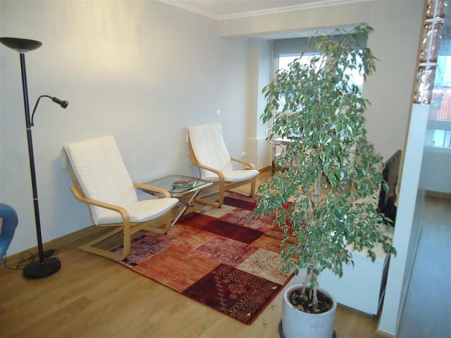 Cosy apartment 3 min from the beach - Santander - Osakehuoneisto