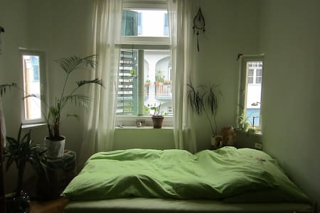 Cozy and central flatshare