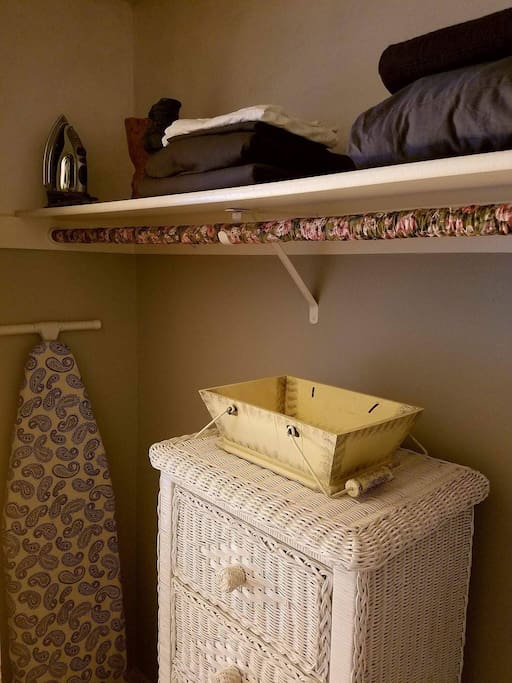 Open closet with hangers, drawers, iron and ironing board .