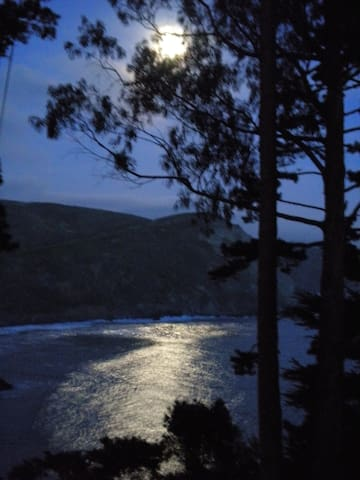 view from bedroom / unit during full moon