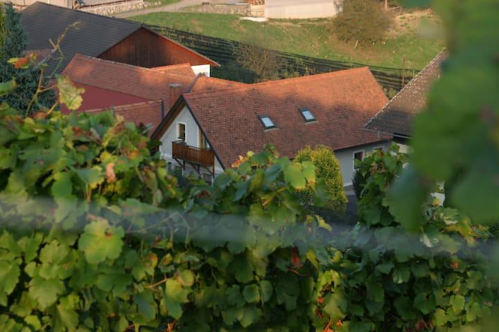"""Winzerwohnung """"Weinblicke"""" - Gemeinde Riegersburg - Casa"""