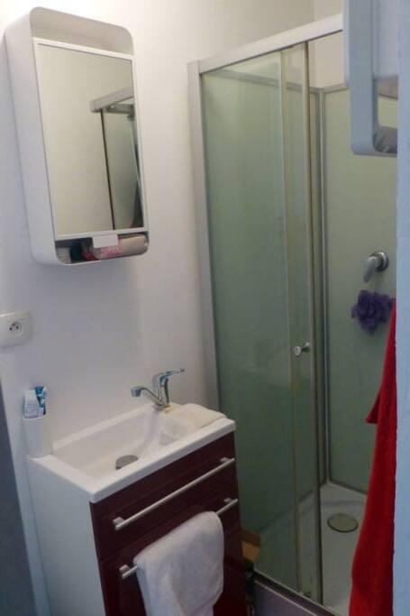 Salle d'eau, douche, lavabo et WC