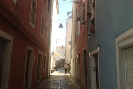 Two Roses Studio-old city center - Zadar - Apartment