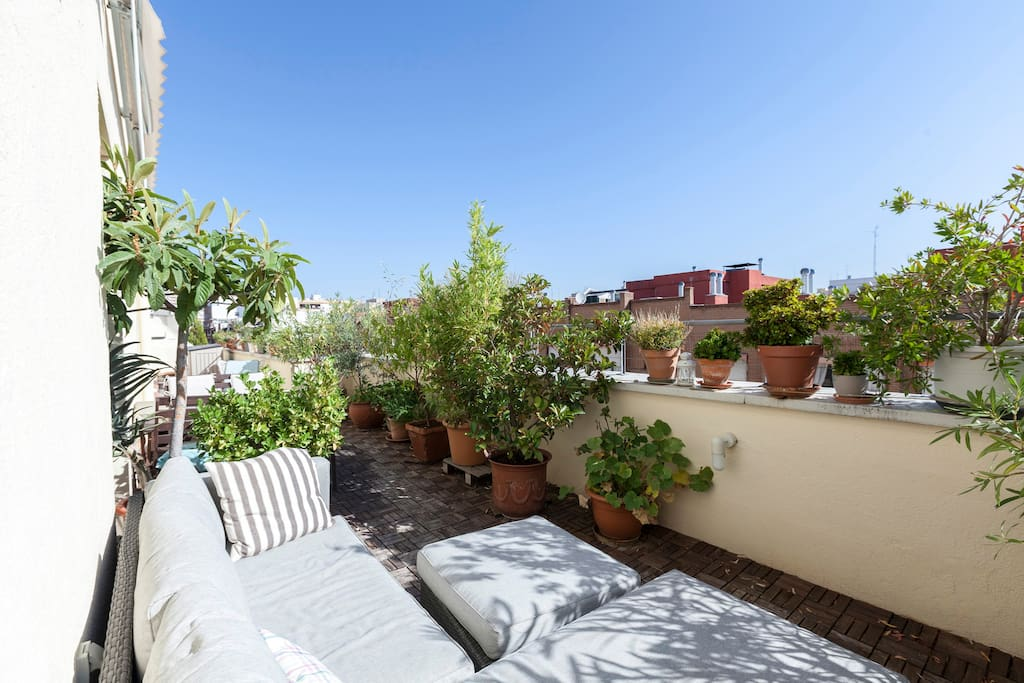 Terrace, in total 40 sqm., beautiful with a lot of plants, -  chill-out area with big sofa.