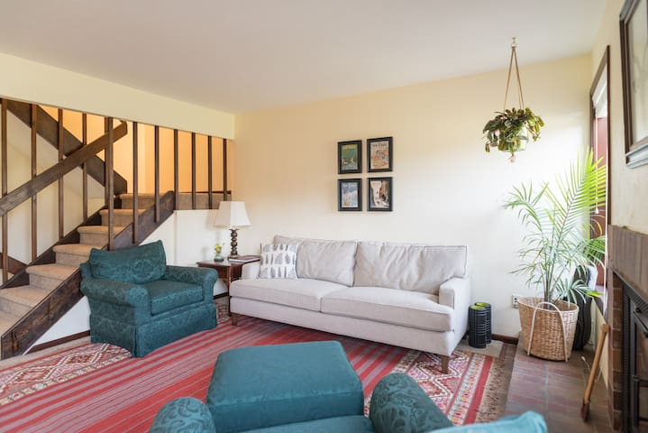 Spacious & Newly Renovated Basement Suite