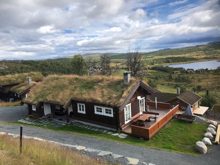 Hytte på Rauland med fantastisk utsikt