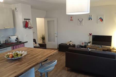 Chambre dans appartement chaleureux proche centre - Strasbourg