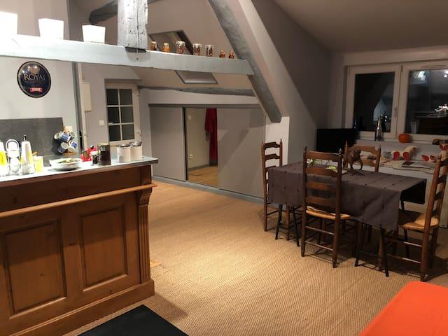 Le Vieux Moulin de Balagny SENLIS/CHAMANT 60300