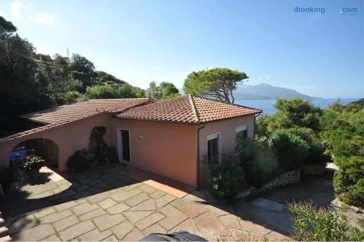 Villa Enfola - 8 posti letto - a picco sul mare