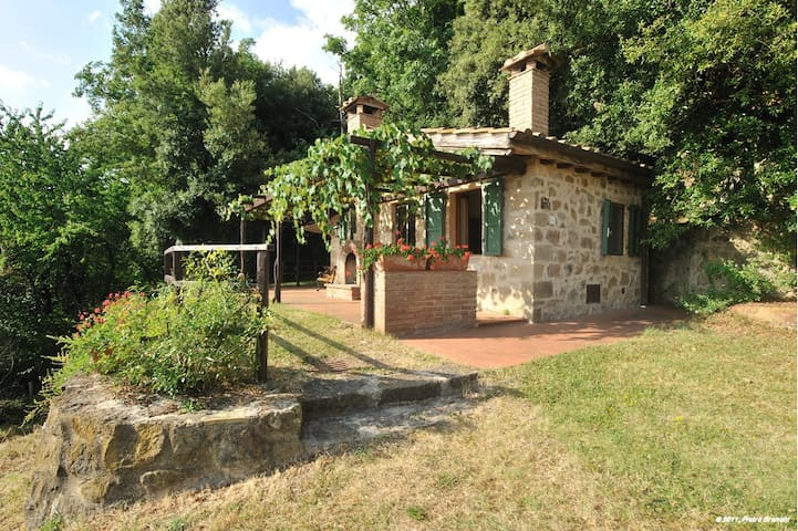 Holiday in antique farm, Belvedere - Roccatederighi