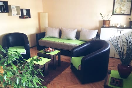Cozy place for a perfect trip - Niš - Apartmen