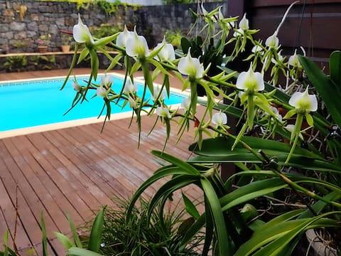Maison des hôtes : Ch2 piscine/hammam. classé 4*