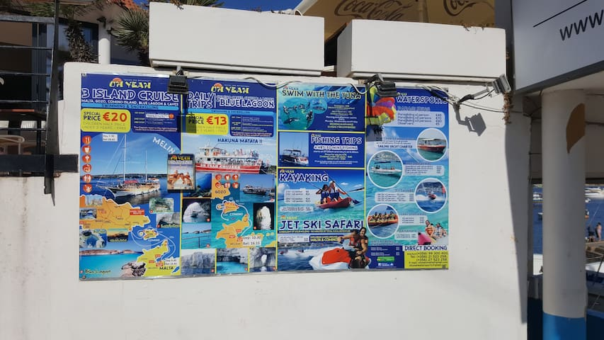 Local excursions offered by local dive center  by boat etc.