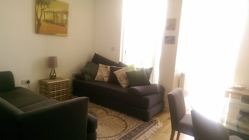 Beautiful flat, NE London - London - Apartment