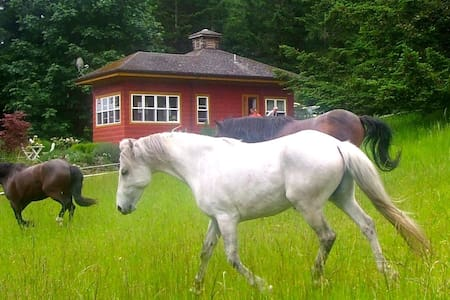 The Rose Cottage - Talking Horse Farm on Orcas - Eastsound - 小木屋
