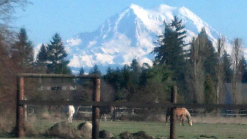 Rural privacy, Rainier view, horse/bicycle friendl - Yelm - Autocaravana