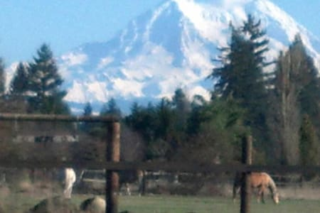 Rural privacy, Rainier view, horse/bicycle friendl - Yelm