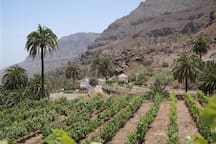 Way to the villa