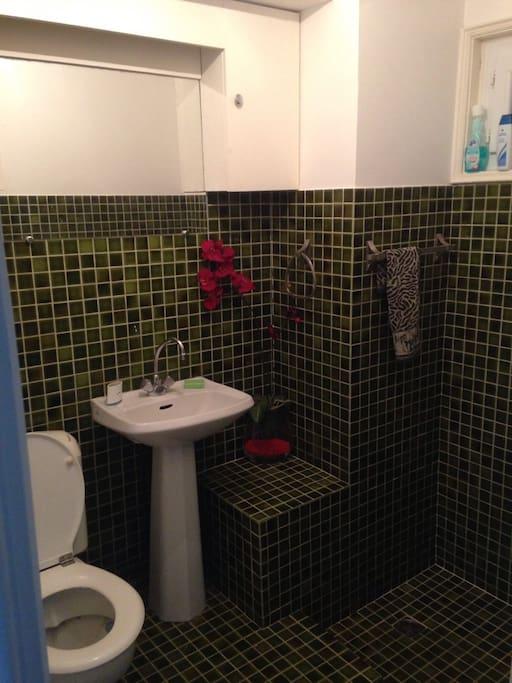 Salle de bain wc douche italienne