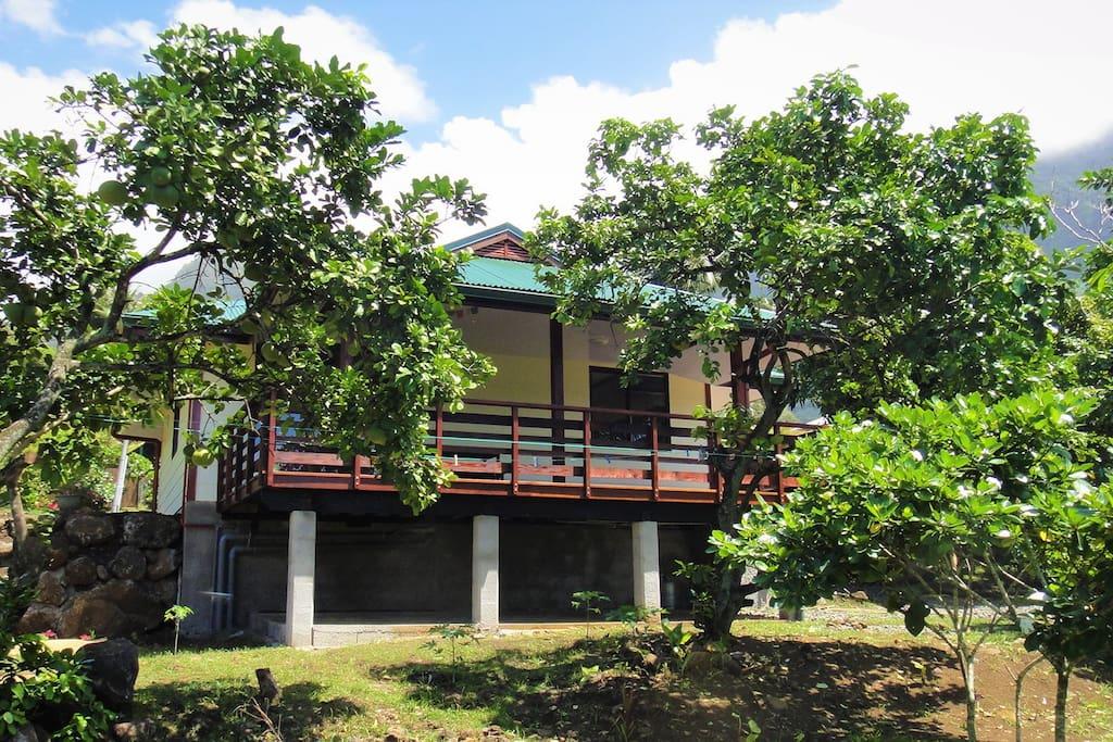 Maison entourée d'arbres fruitiers
