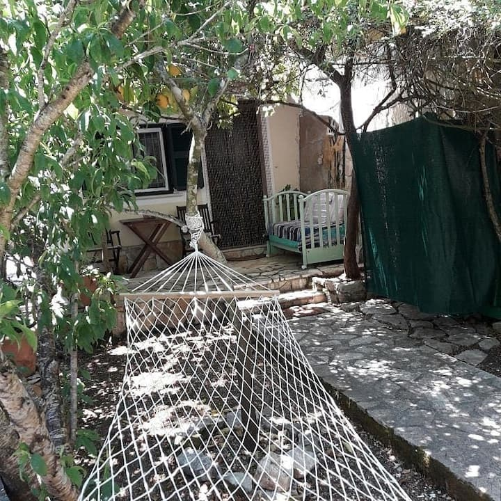 Natasa s peacefuplace among the olive trees