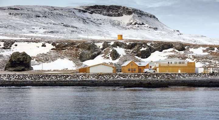 Spacious Double Room with view of Grimsey Island - Westfjords!