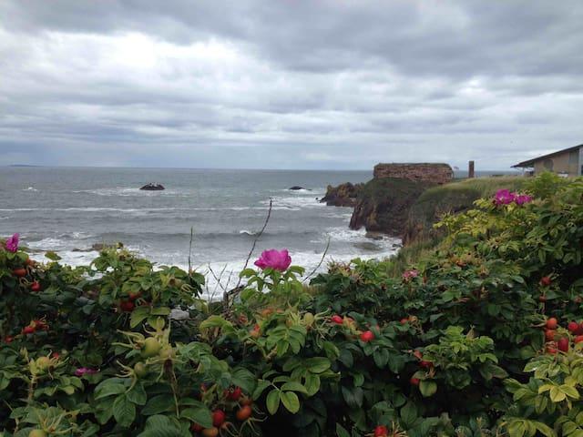 lovely harbour town - Dunbar - Bed & Breakfast