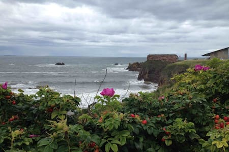 lovely harbour town - Dunbar - Bed & Breakfast